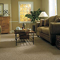 Shaw Industries - Carpet